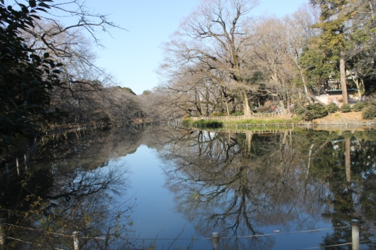 Inokashira's main lake