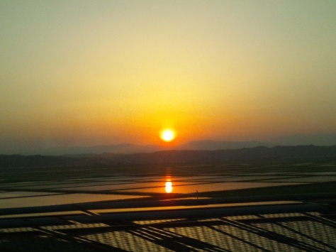 The sun setting over rice fields, as viewed from my seat on the bullet train to Tokyo.