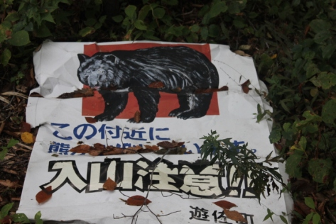 And apparently, Chokai is home to some bears, too. Thankfully, we didn't catch a glimpse of any.