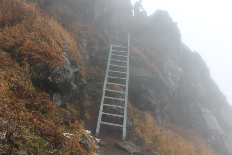The higher we hiked, the more precarious the trail became. See Exhibit A: Ladder o' Doom.