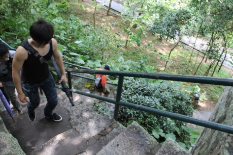 Climbing the stairs of the Fortaleza do Monte.
