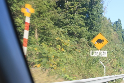 """Being from Pennsylvania, I'm used to the """"Deer X-ing"""" signs. In Japan? They've got """"狸 [tanuki, raccoon dog] crossings."""""""