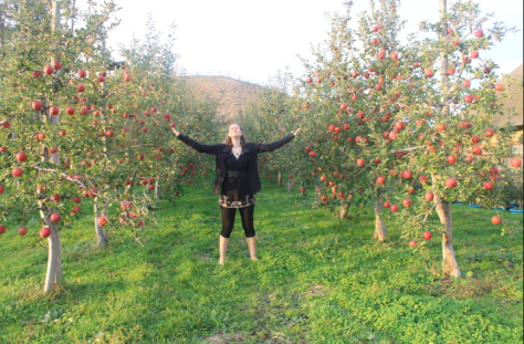 "Can I take ""Queen of the Apples"" as an official title?"