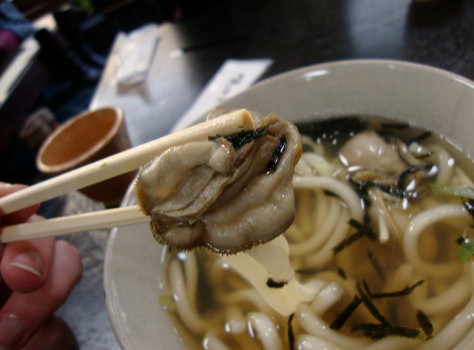 Oyster udon for lunch