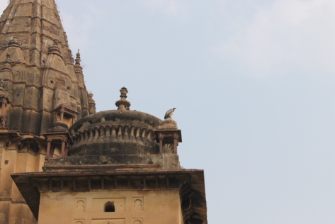 A vulture sitting atop one of the cenotaphs