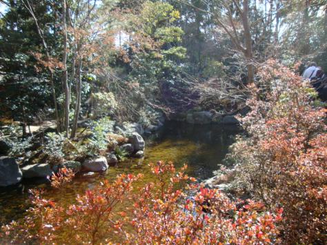January in Samukawa