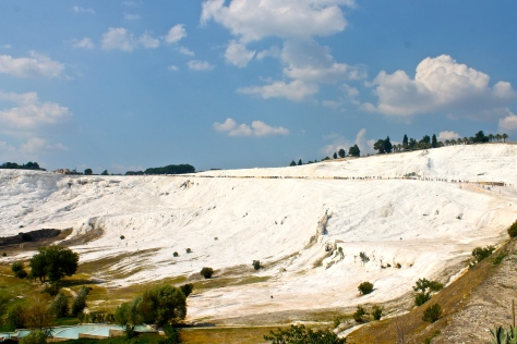 Calcium carbonate deposits have covered the hillside.